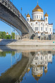 Vertical shot of Christ the Savior and the bridge — Foto de Stock