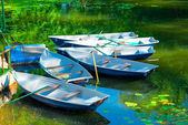 Rowing boats in the pond in the early morning — Stock Photo