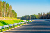 A new road is laid in the forest — Stock Photo