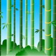 Bamboo forest in daylight — Stock Vector