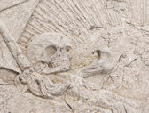 Skull on gravestone — Stockfoto