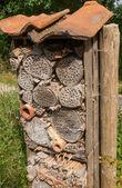 дом насекомого — Стоковое фото