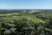 Vineyards of Sancerre — Stock Photo