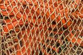 оранжевый сетки — Стоковое фото