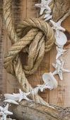 Rope and shell — Stock Photo