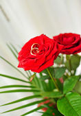 Anneaux de mariage avec fleur rose — Photo
