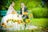 Newly-married couple and flowers in the foreground. — Stock Photo