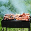 Royalty-Free Stock Photo: Barbecue in the forest.shashlik at nature.Process of cooking meat on barbecue, closeup.Barbecue with meat in metal grate, closed-up in forest with grass