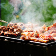 Barbecue in the forest.shashlik at nature.Process of cooking meat on barbecue, closeup.Barbecue with meat in metal grate, closed-up in forest with grass - Stock Photo