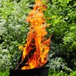 Royalty-Free Stock Photo: Flames burning in a barbecue standing in a pretty garden as the coals are prepared for grilling an array of meat for a lunchtime cookout .Burning wood and coal in fireplace .