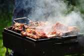 Barbecue in the forest.shashlik at nature.Process of cooking meat on barbecue, closeup.Barbecue with meat in metal grate, closed-up in forest with grass — 图库照片