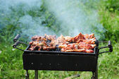 Barbecue in the forest.shashlik at nature.Process of cooking meat on barbecue, closeup.Barbecue with meat in metal grate, closed-up in forest with grass — Стоковое фото