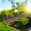 romantic sunset moment on bridge in park .beautiful sunset on the bridge in the autumn day — Stock Photo
