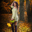 Young caucasian sensual woman in a romantic autumn scenery .Fall lady .Fashion portrait of a beautiful young woman in autumn forest. Beauty autumn — Foto Stock
