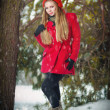 Attractive blonde girl with gloves, red coat and red hat posing winter snow.Beauty woman in the winter scenery.Young woman in wintertime outdoor — Stock Photo #39461477