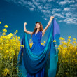 Fashion beautiful young woman in blue dress posing outdoor with cloudy dramatic sky in background. Attractive girl with elegant dress posing in canola field. Long hair brunette enjoying the rapeseed — Stock Photo