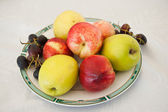 Various fruits on plate. Fresh and colored apples, grapes and nectarines on white table — Stock Photo
