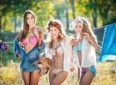 Three sexy women with provocative outfits putting clothes to dry in sun. Sensual young females laughing putting out the washing to dry in sunny day. Perfect body housewives with a dog, shot in forest — Foto de Stock