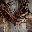 Royalty-Free Stock Photo: Crown of thorns