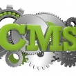 Stock Photo: Cms gears