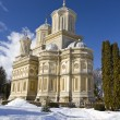 Stock Photo: Curtede Arges Monastery in winter