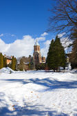 Garden of Curtea de Arges monastery in winter — Stock Photo