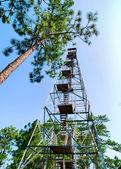 Smith Mountain Tower — Stock Photo