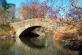 Ponte no parque — Fotografia Stock