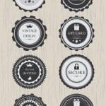 Retro badges — Stock Vector #21668749