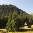 Stock Photo: Mountain Tatry