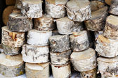Storage birch logs — Stock Photo