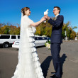 Stock Photo: Bride and groom with white pigeons on wedding walk