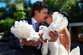 Küss die braut und der bräutigam mit den tauben — Stockfoto