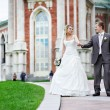 Bride and groom at a wedding a walk — Stock Photo #21293663