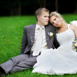 Bride and groom on grass — Stock Photo #21294383