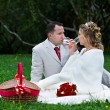 Bride and groom on wedding picnic — Stock Photo