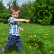 Little boy goes on meadow and indicates direction — Stock Photo