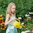 Little girl watering flowers — Stock Photo