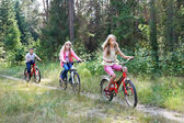 Children riding bikes in the woods — Stock Photo