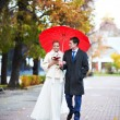 Happy bride and groom walking in yellow autumn park — Stock Photo #36360919