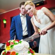 Cutting the cake newlyweds — Stok fotoğraf