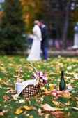 Glückliche Braut und Bräutigam im Park am Picknick — Stockfoto