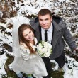 Happy bride and groom in winter day — Stock Photo #36441669