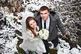 Glückliche Braut und Bräutigam in Wintertag — Stockfoto