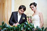 厳粛な婚姻届 — ストック写真