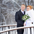 Happy bride and groom on winter day — Stock Photo #37262319
