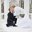 Groom declaration of love bride and shi kisses him — Stock Photo