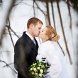 Kiss of bride and groom — Stock Photo #37393855