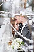 Любители жених и невеста — Стоковое фото