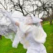 Beautiful bride with veil in wedding walk — Stock Photo #40234111